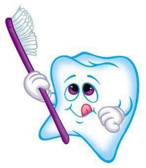 stalder-dental